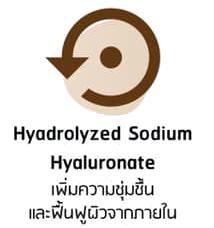 Hyadrolyzed Sodium พิณนารา