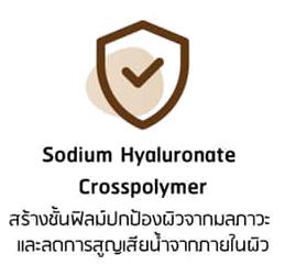 Sodium Hyaluronate crosspolymer พิณนารา